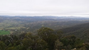 mt-tennant-views